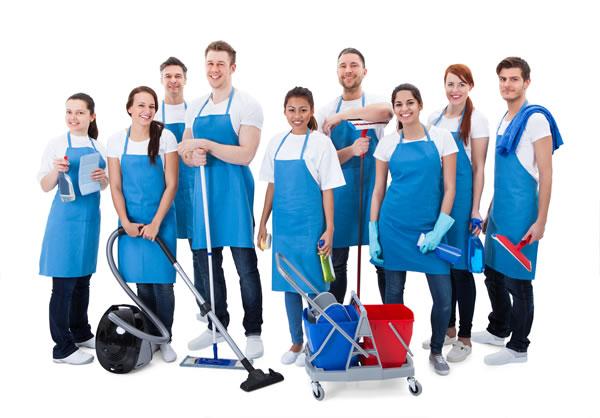 Professional Domestic Services Cheshire